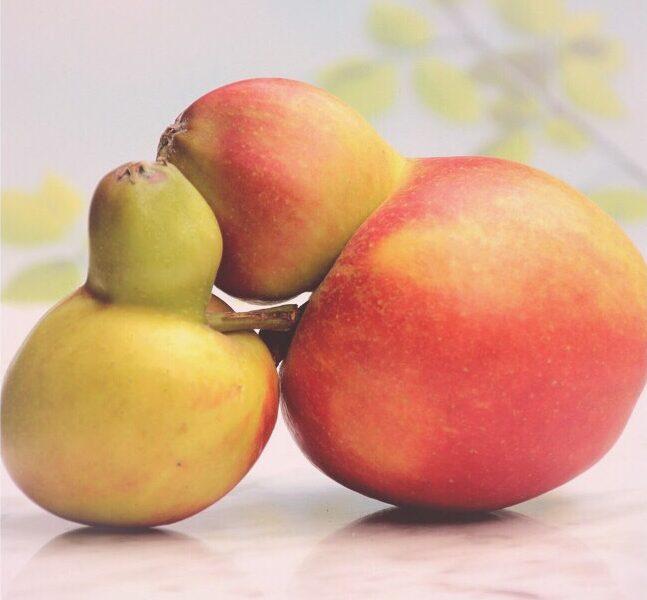 Cuore di frutta gelato Mashcream